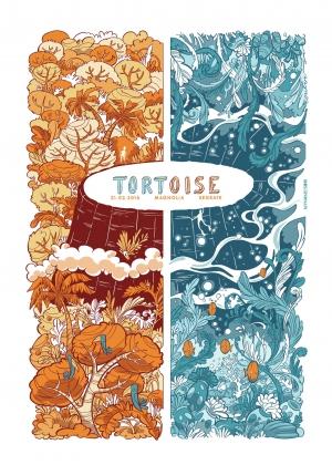 Tortoise Gig Poster